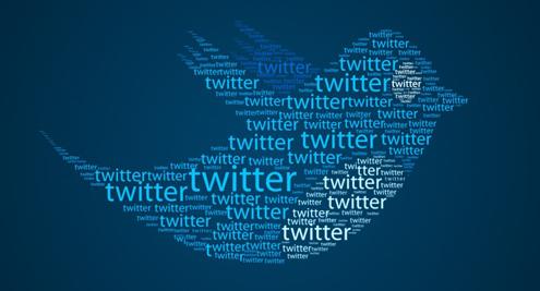 Twitter Fans
